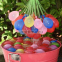 Водяные шары Balloon Bonanza оптом - 1